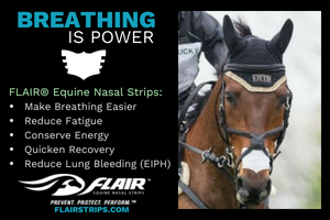Flair Equine Nasal Strips German Eventing